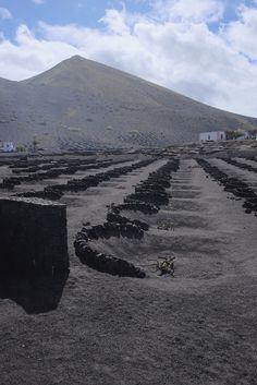 Lanzarote The unusual volcanic soils of Lanzarote greet you also the islands serenity and silence welcome individuals to disconnect��_