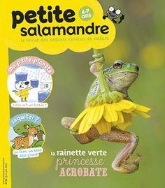 La rainette verte, princesse acrobate (n°6)