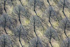 Photographer Klaus Leidorfs Aerial Archaeology - Clones