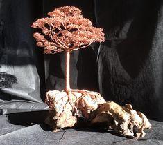 Copper wire tree on driftwood bonsai