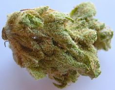 Top Ways that Marijuana Legalization can Change Florida