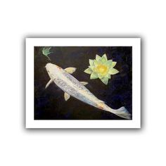 'Platinum Ogon Koi' by Michael Creese Canvas Poster