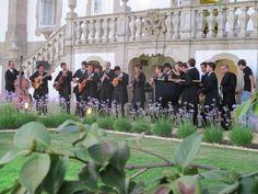 männliche Medizinstudenten singen und tanzen für uns. Foto: Doris Portugal, Pictures