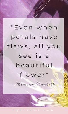 Even when petals have flaws, all you see is a beautiful flower; Quote & photography by Adrianne Elizabeth Quotes Wabi-sabi; The art of finding beauty in imperfection and other daily musings Beautiful Flower Quotes, Flower Quotes Inspirational, Pretty Quotes, Beautiful Flowers, Inspirational Posters, Inspiring Quotes, Motivational Quotes, Flaws Quotes, Quotable Quotes