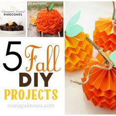5 Fall DIY Projects You Should Try This Year. Fall is my favorite season! I especially love all the fun Fall decor and the colors!