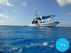 Let's Go Diving!!!  Cozumel Island, Mexico