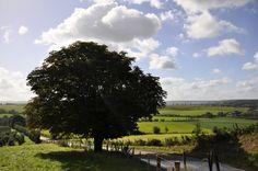 Schitterende heuvellandschappen sieren de omgeving in Hartje Limburg.