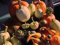 #vscocam lovely autumn day.