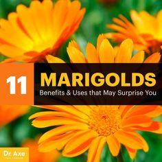 Marigolds - Dr. Axe http://www.draxe.com #health #holistic #natural