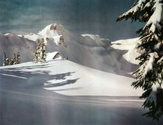 The Austin Pass ski shelter near Mt. Baker, in the North Cascades range, Washington state, late 1950s.  This is part of the Mt. Baker Ski Area which is home to the world's greatest recorded snowfall in one season: 95 feet. This record breaking snowfall occurred during the 1998-99 season. Mt. Baker also enjoys the highest average annual snowfall of any resort in the world, with 53.4 feet.