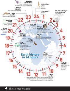 Modern humans have existed for approximately four seconds.  From the The Science Magpie, via AsapSCIENCE.