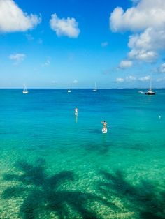 my dream vacation with my family would be to go to the Caribbean to paddle board and surf #caribbean #standuppaddle