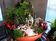 Miniature and Fairy Gardens from the Great Annual Miniature Garden Contest, Part 6 of 6 And here is the last installment from our series wrap-up for the Great Annual Miniature Garden Contest: the r…