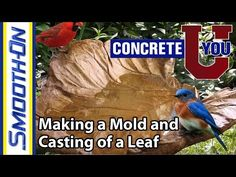 Make a Concrete Leaf Mold - Smooth-On Molds of Nature - YouTube