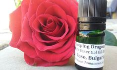 Bulgarian Rose Oil blend in jojoba, 5mLs, ready to use, all natural Aromatherapy #SleepingDragonsCompany