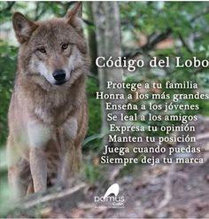 Código de un lobo