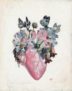 Cate Rangel - 'Metamorphosis'