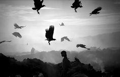 Plight of the Warao by Meridith Kohut