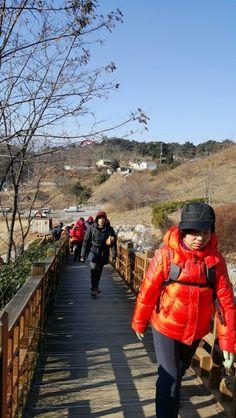 솔올 도시산림공원 진입