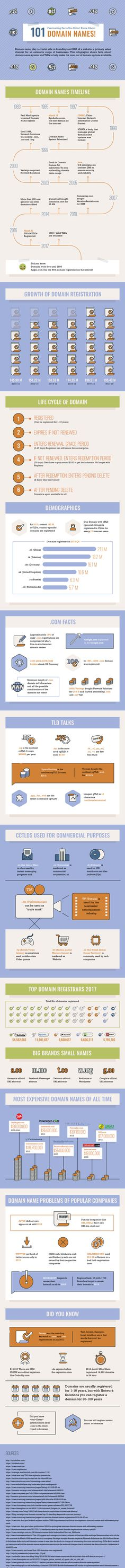 101 Fascinating Facts You Didn't Know About Domain Names #Infographic
