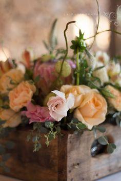 L.A Photography  www.laphoto.co.za
