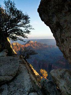 Grand Canyon National Park - Photo by Silke Weidemann