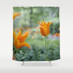 Tulips In Orange Shower Curtain By VanessaGF