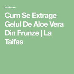 Cum Se Extrage Gelul De Aloe Vera Din Frunze | La Taifas Aloe Vera, Plant