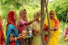 Vila indiana planta 111 novas árvores cada vez que nasce uma menina