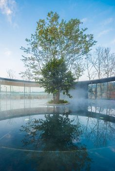 Ruff Well Water Resort by AIM Architecture