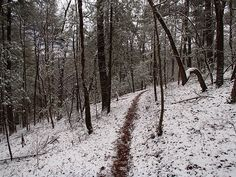 Love to run in the snow!!! #trailrunning #snow #winter rockcreek.com