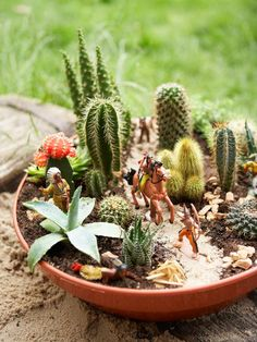 Cactus Dish Garden: This centerpiece mixes cactus and succulents with pebbles and plastic toys to add a little fun to the garden. From HGTV.com's Garden Galleries