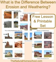 Erosion vs Weathering ~ Awesome Science STEM Activities - The Natural Homeschool Earth Science Lessons, Earth And Space Science, Science Fair, Science Education, Science Activities, Science Nature, Science Tutor, Forensic Science, Weird Science