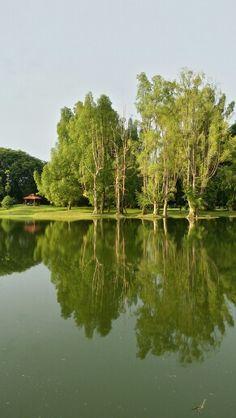 Taiping Perak Malaysia Taiping, Golf Courses, Landscape, World, Travel, Scenery, Viajes, Destinations, The World