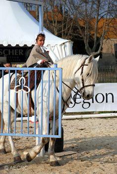 CAMAGRI Salon du Cheval Camargue