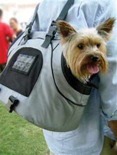 Dog bag voor kleine hond
