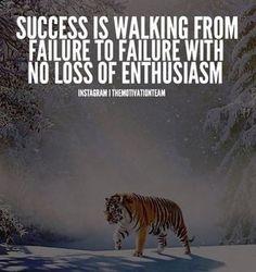 We felt compelled to post this powerful image by @themotivationteam  #tiger #wild #wilderness #achievebelieve #career #work #success #inspiration #motivation #picoftheday #pictureoftheday #potd #potd #followme #follow4follow #like4like #kayman #kaymanrecruitment