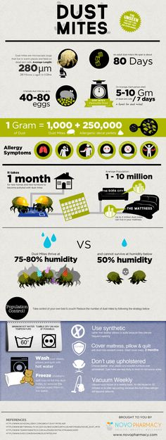 Dust Mites: They Are Everywhere via @pinfographics < kind of gross - reader beware!