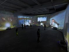 Diana Thater, Chernobyl, 2011 6 Video projectors, 6 media players, Lee filters Dimensions variable Installation view, David Zwirner Gallery, New York, 2012