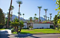 Ralph Haverkate provides exemplary service in Rancho Mirage Real Estate, Palm Springs Modern Homes and Indian Wells Real Estate, among other areas. Rancho Mirage, Modern Homes, Wells, Palm Springs, Marina Bay Sands, Real Estate, Indian, Building, Travel