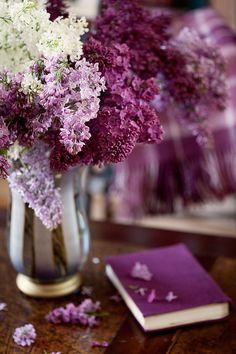 pretty purple lilacs and book
