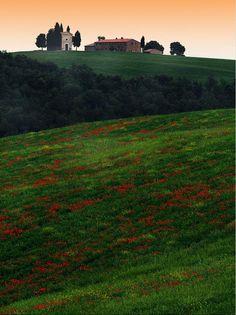 Amazing Val d'Orcia, Province of Siena, Tuscany region Italy