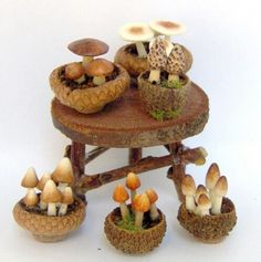 Small mushrooms in acorn tops perfect for a fairy or mini house!