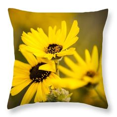 """California Sunflowers Throw Pillow. Our throw pillows are made from 100% spun polyester poplin fabric and add a stylish statement to any room.  Pillows are available in sizes from 14"""" x 14"""" up to 26"""" x 26""""."""