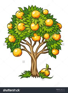 Fruit Tree Clipart - Clipart Suggest Fruit Clipart, Tree Clipart, Flower Clipart, Apple Tree Drawing, Landscaping Trees, Tomato Cages, Garden Drawing, Fruit Garden, Fruit Trees