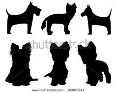 Small dog silhouettes (Yorkshire Terrier and Schnauzer) by tkemot, via Shutterstock