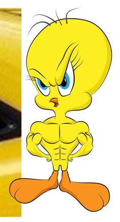 My Muscle Tweety Bird :)