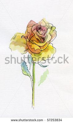 classic rose tattoo watercolor - Google Search