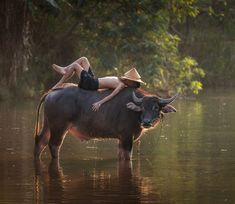 Another shot from rural Thailand. A young boy takes a break on a water buffalo Village Photography, Children Photography, Portrait Photography, Kids Around The World, People Of The World, Amazing Photography, Nature Photography, Photography Ideas, Village Kids