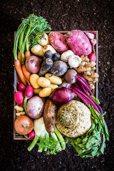 Fritters, pancakes, no-churn ice cream! Here's what to do with those root vegetables Oven Vegetables, Making Gnocchi, Vinegar Dressing, No Churn Ice Cream, Gnocchi Recipes, Sunday Meal Prep, Chili Lime, Batch Cooking